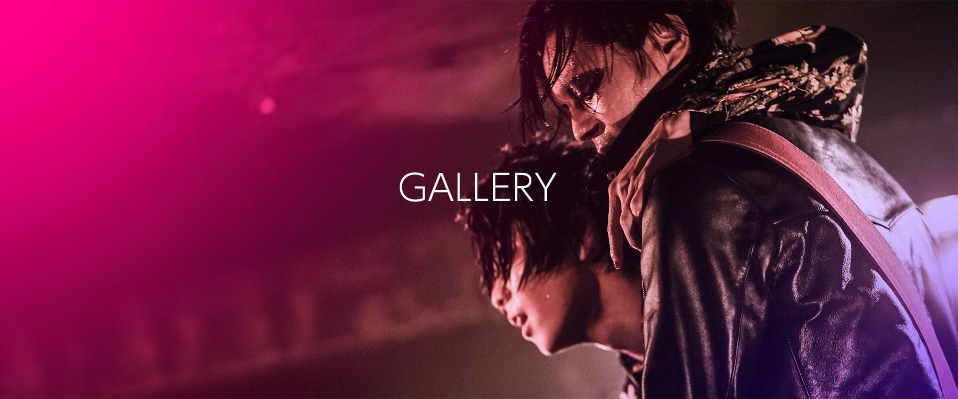 header_gallery